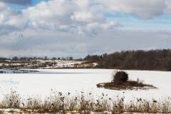 Suburban Avalon Winter